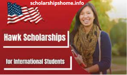 Hawk Scholarships 2021 in USA -for International Students