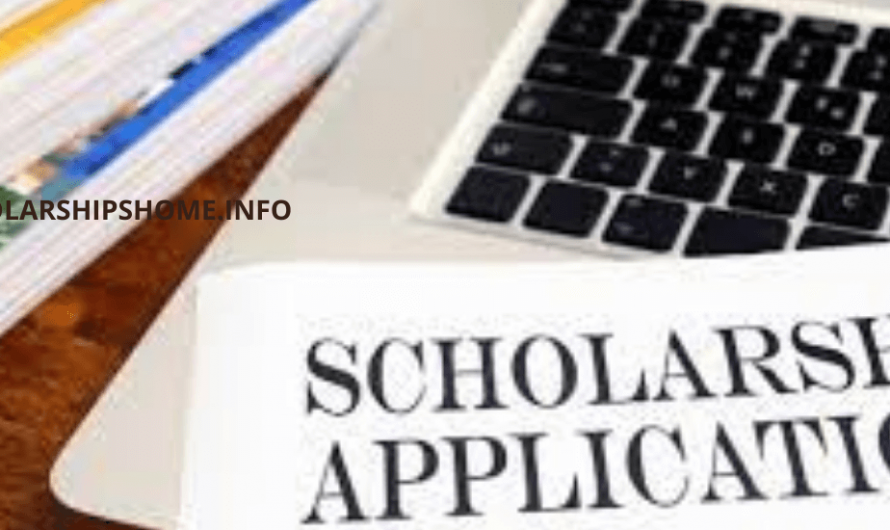 How to Prepare Scholarship Application – 5 Tips to Succeed